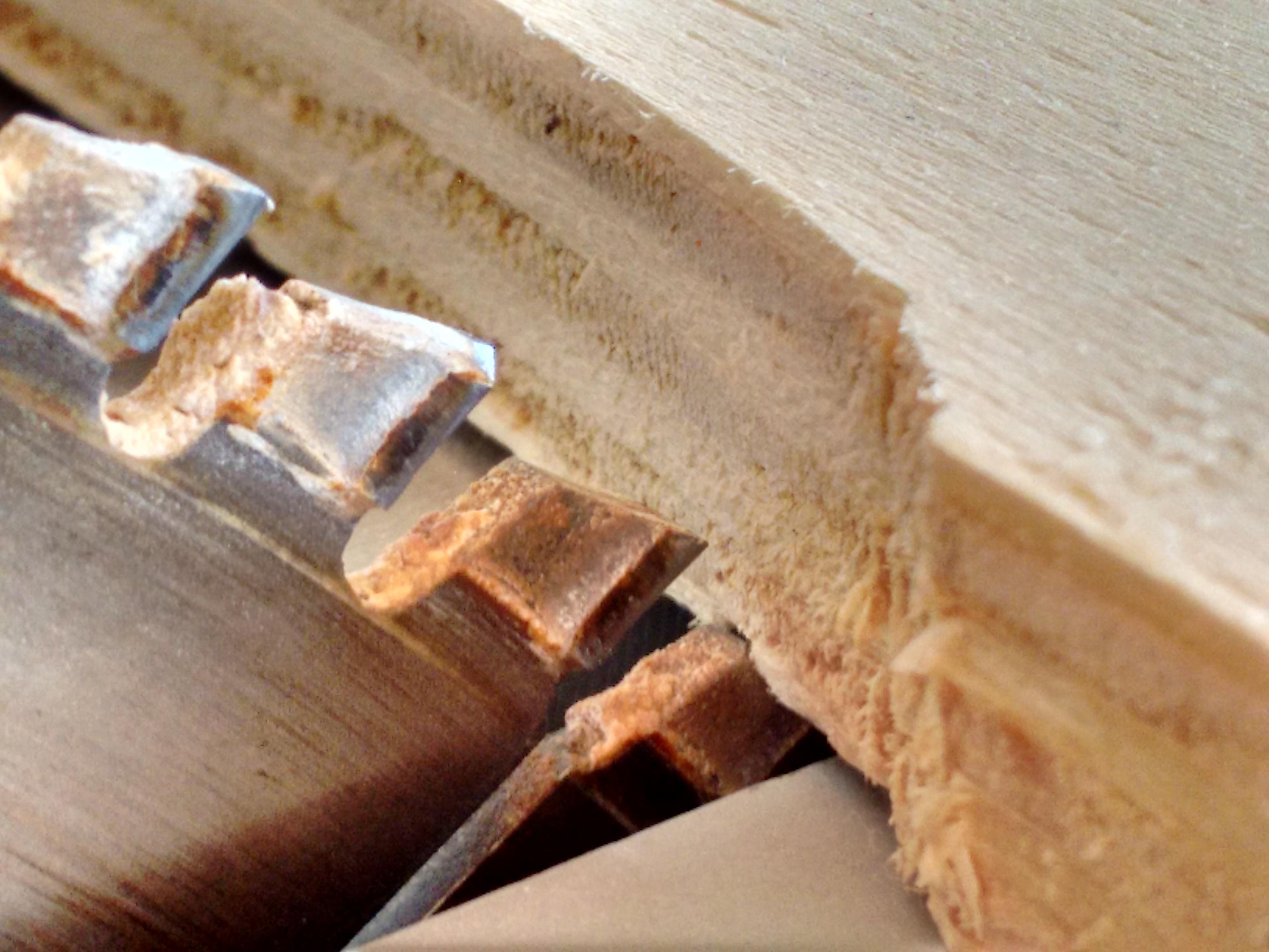 sega_legno